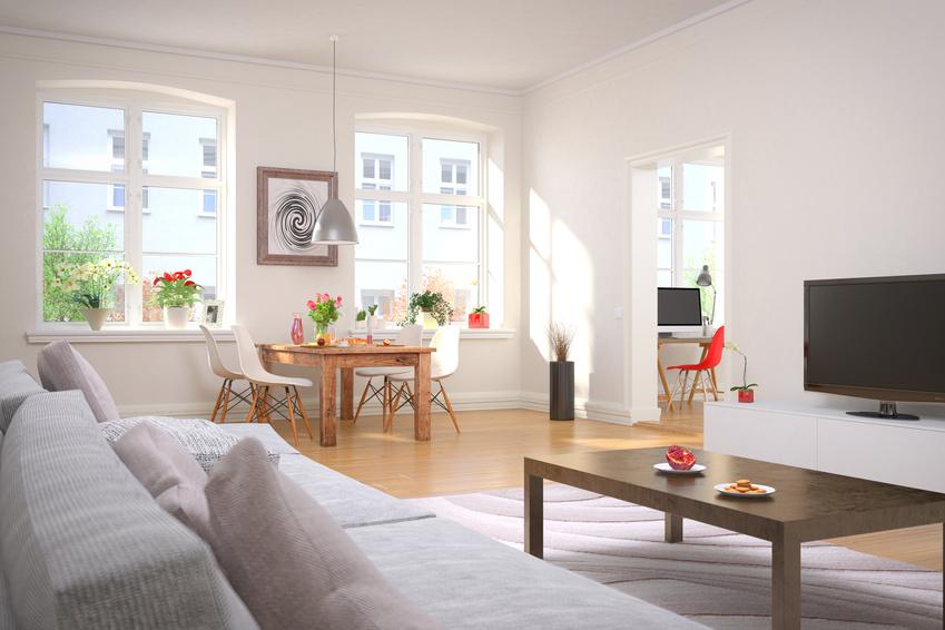 Wohnzimmer und Esszimmer mit einem gedeckten Frühstückstisch